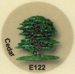 E122 ヒマラヤスギ