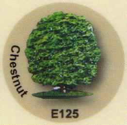 E125 クリの木