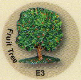 E3 果樹