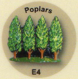 E4 ポプラ