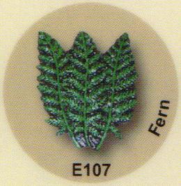 E107 シダ