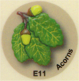 E11 ドングリ
