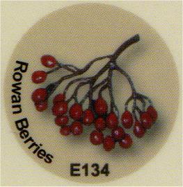 E134 赤い実