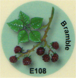 E108 キイチゴ