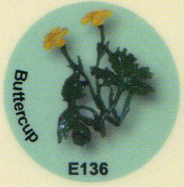 E136 キンポウゲ