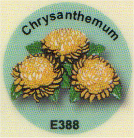 E388 菊