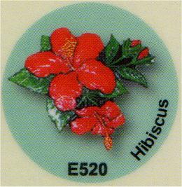 E520 ハイビスカス