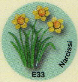E33 スイセン
