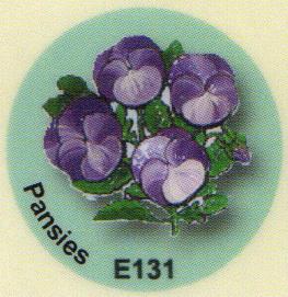 E131 パンジー