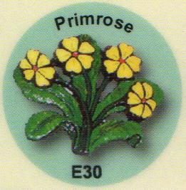 E30 プリムラ