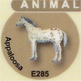 E285 アパルーサ(馬)