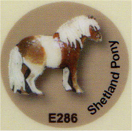 E286 シェトランドポニー