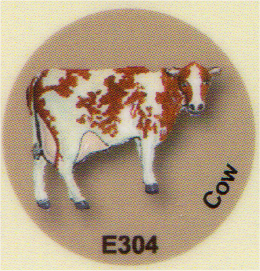 E304 牛
