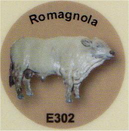 E302 牛