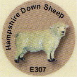 E307 羊(ハンプシャーダウン)
