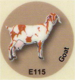 E115 ヤギ