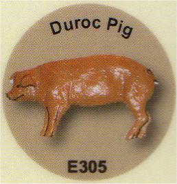 E305 豚