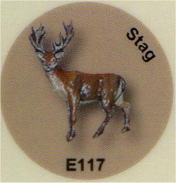 E117 シカ