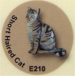 E210 毛の短い猫