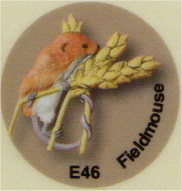 E46 ネズミ